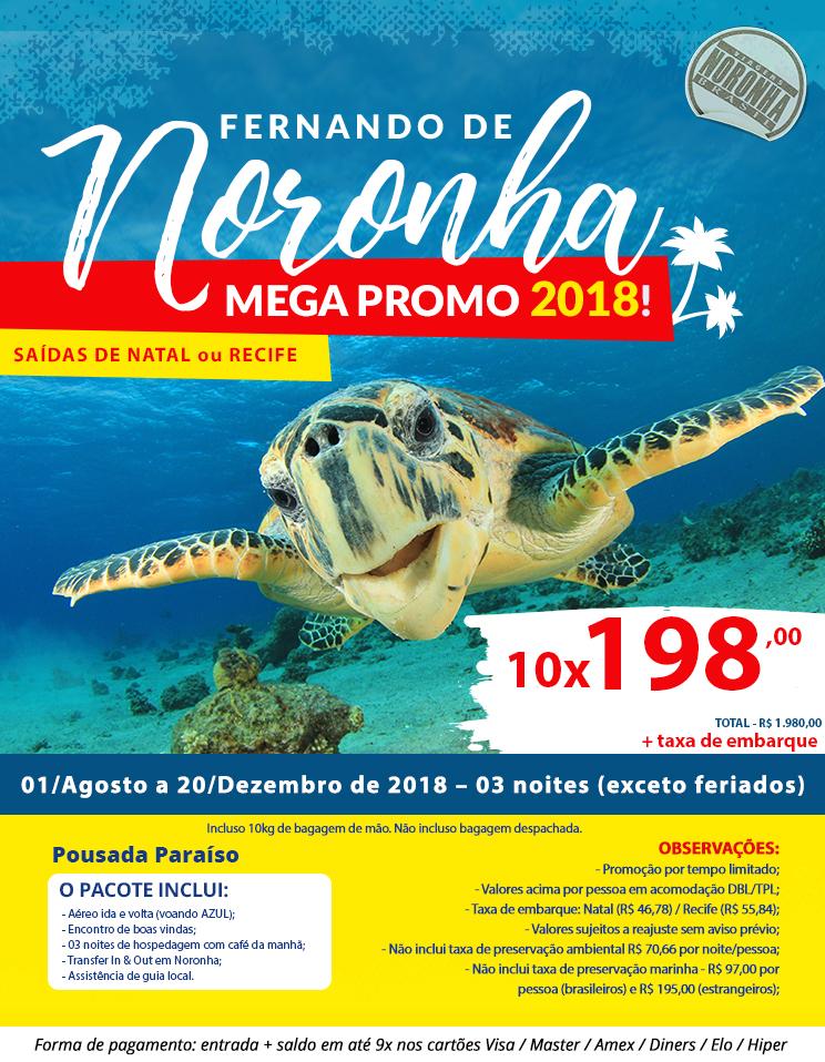 Noronha Brasil